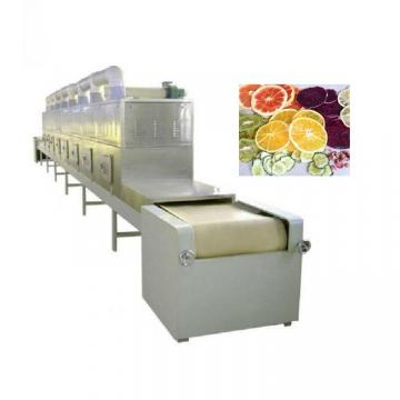 Food Vacuum Drying Oven Fruit Microwave Dryer Machine