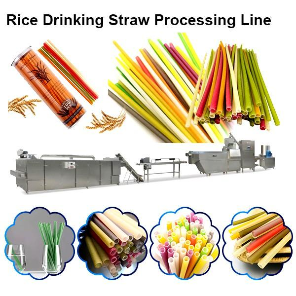 100% Biodegradable PLA Drinking Straw Making Machine Disposable Eco Friendly Polylactic Acid Straw #1 image
