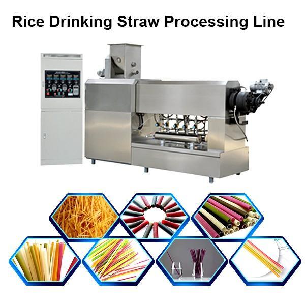 Full Automatic Pasta Straw Making Extruder Machine Pasta Machine #1 image