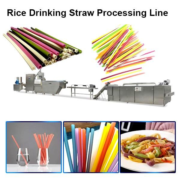 Environmental automatic biodegradable drinking straw making machine extruder processing line #1 image