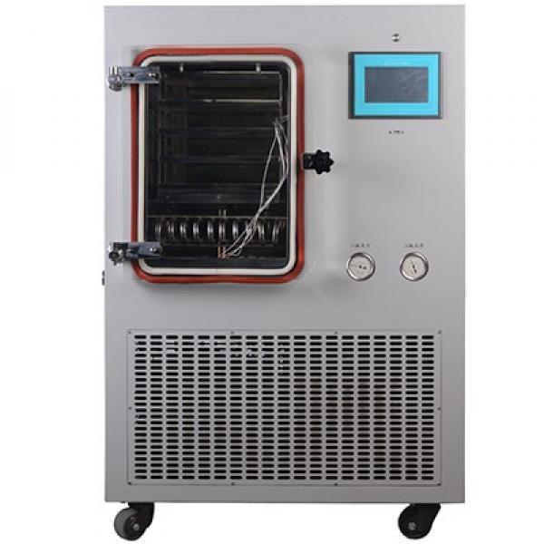High Quality Microwave Vacuum Dryer #1 image