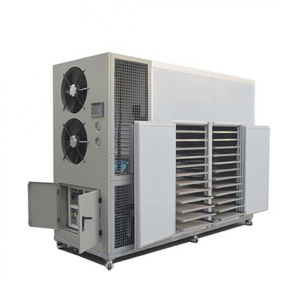 Commercial Food Processing Machine, Meat Dryer Oven, Beef, Fish Dehydrator #1 image