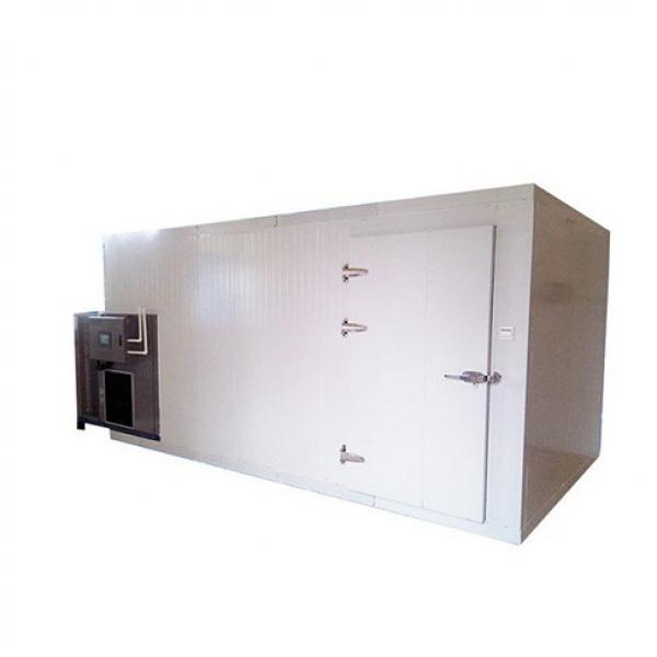 Hot Sale Industrial Mesh Belt Dryer for Fruit and Vegetable #1 image