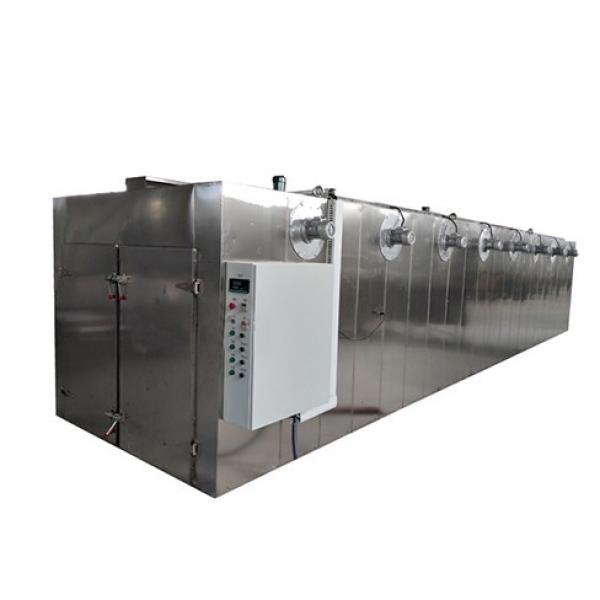 Commercial/Fruit Drying Oven/Fruit/Food Dryer/Dehydrator/and Vegetable/Fish Drying Machine #1 image