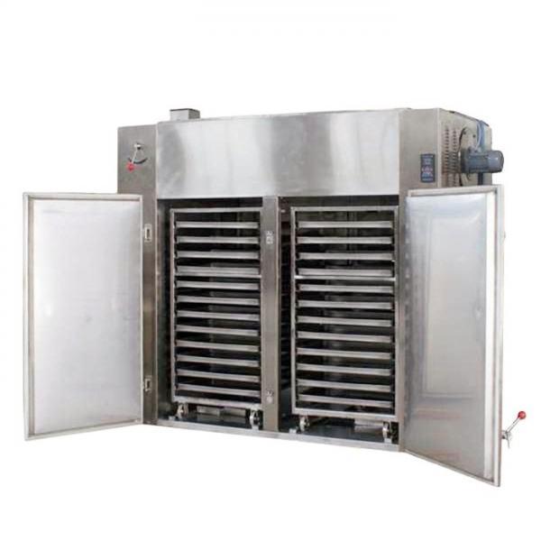 Industrial Belt Dryer Vegetable & Fruit Multi Layer Dehydrator #1 image