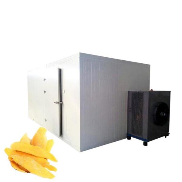 China Industrial Fruit Gas Food Dehydrator #1 image