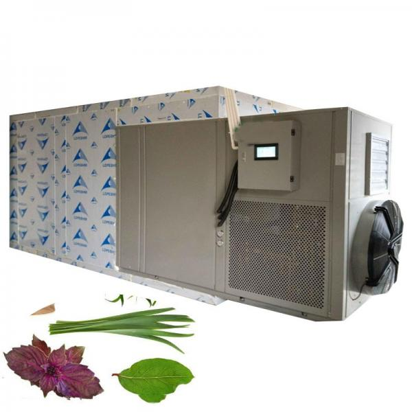 High Quality Fruit and Vegetable Dryer Machine/Vegetables Dewatering Machine #1 image