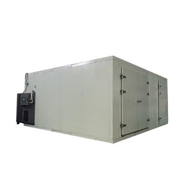 Kinkai Isinglass Dryer Meat Drying Machine Dried Food Process Machine #1 image