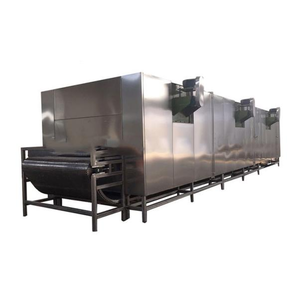 Vegetable Air Dryer Electric Fruit Dryer Machine Vegetable Dryer Equipment Food Drying Process Line/Drying Lines for Fruit #1 image