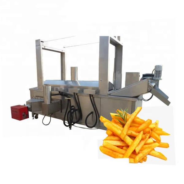 Automatic French Chips Frying Machine /Gas Fryer 2 Basket /Electric Industrial Deep Fryer #1 image