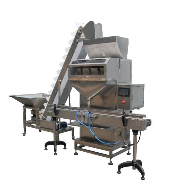 Powder Food Filling Machine and Bagging System with Multihead/Automatic Weighing Filing Packing Machine #1 image
