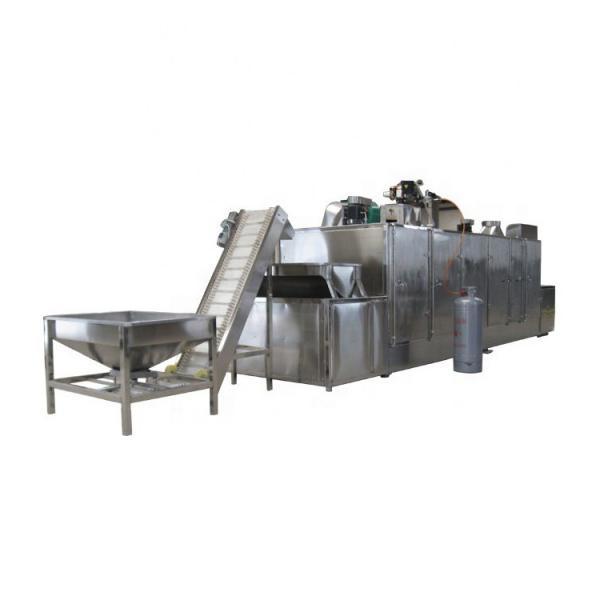 1000-5000pounds/H Gas Heated Cbd Hemp Dryer Mesh Belt Continuous Dryer #1 image