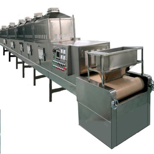 Industrial Microwave Drying Machine/Tunnel Conveyor Belt Type Continue Produce Microwave Dryer #1 image