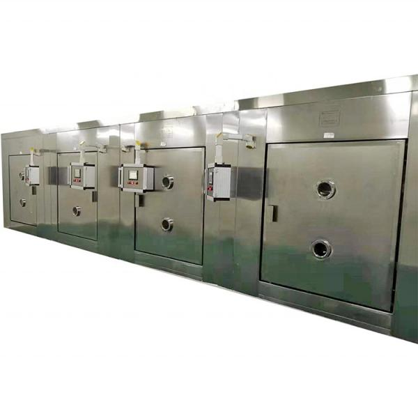 Multiple Module Controlled Industry Customized Made Tunnel Dryer #3 image