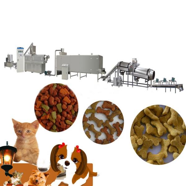 Dayi Hot Well Pet Food Extruder/Pet Food Processing Line #1 image